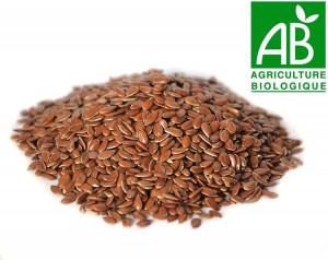 Graine de lin Bio