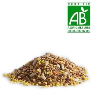 Graine mélange 4 céréales Bio