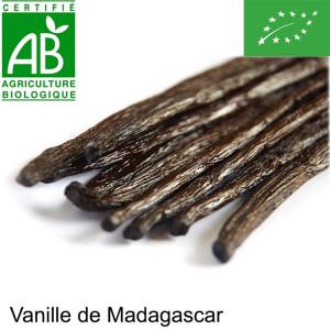 1 Gousse de vanille Madagascar BIO.